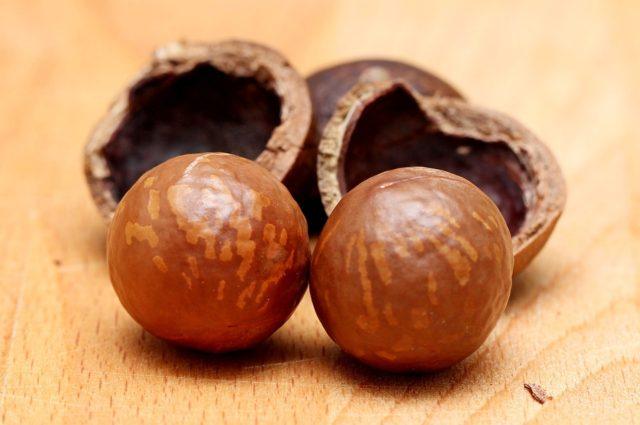 Орех макадамия – полезные свойства и противопоказания