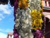 Фестиваль хризантем – осеннее чудо
