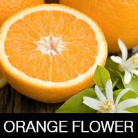 Экстракт Апельсина